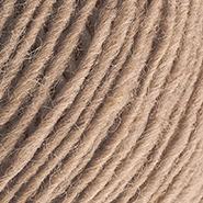 Inselschaf Sandstrand Wolle Ansicht